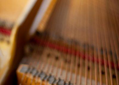 Pleyel-Flügel-13